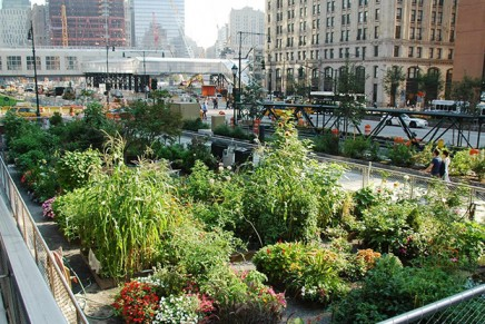 Imagining the Future of Food in Cities: The Producer City