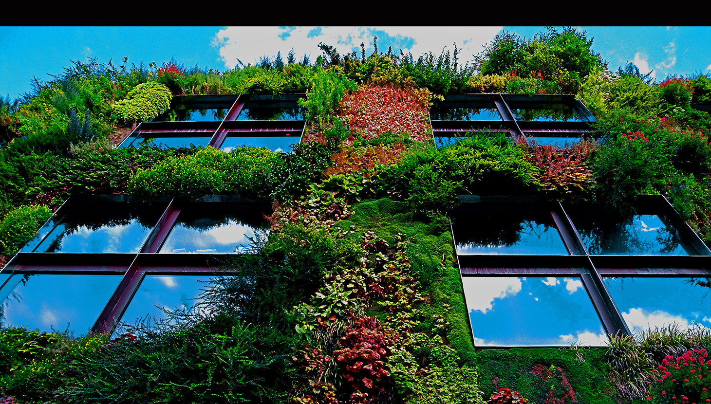 Congress Workshops: Spotlight on Biophilic Design | The Academy of Urbanism