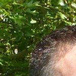 Profile picture of Matt Thomson